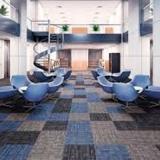 carpete forração